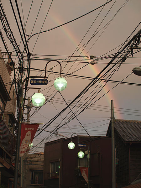 rainbow_2009.jpg