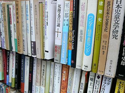 sizuku_0311_10.jpg
