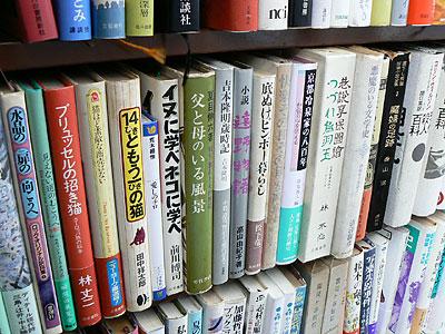 sizuku_0311_11.jpg