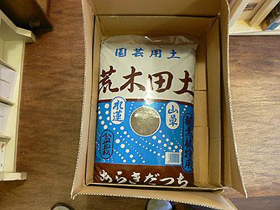suiren_01.jpg