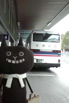 tabineko-2011-06-25T14-01-26-1.jpg